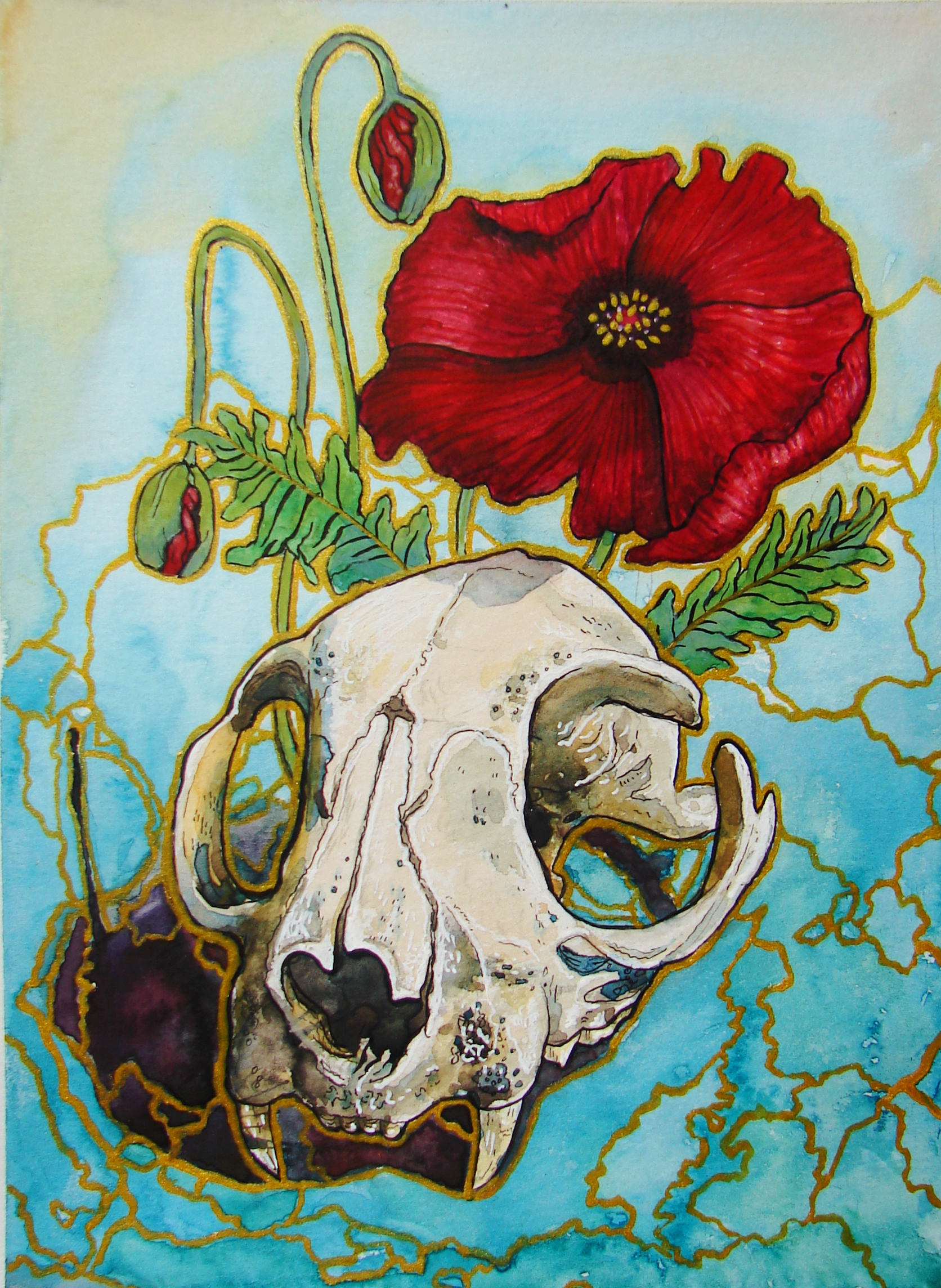 cat skull with poppies